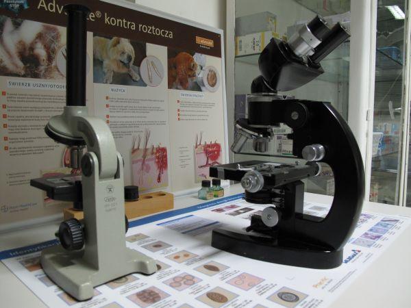 Badanie mikroskopowe