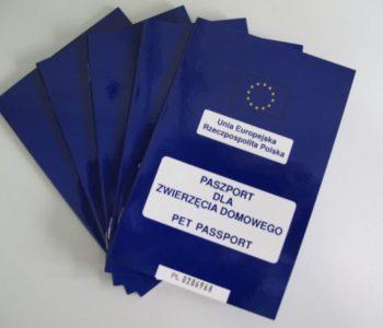 paszporty dla zwierząt zdjęcie